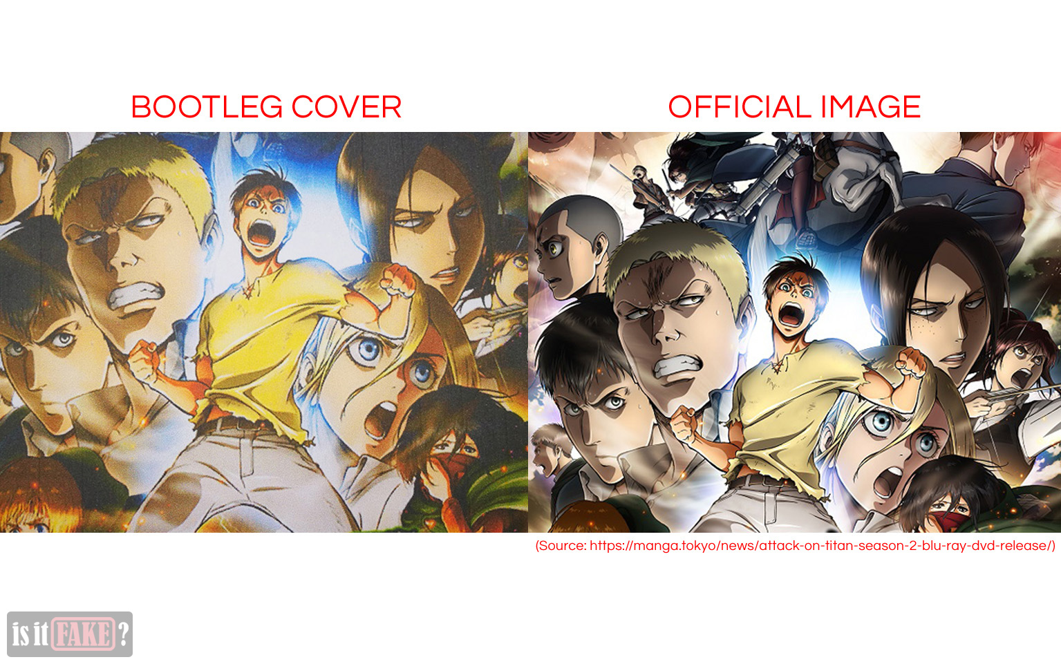 Bootleg cover vs. Official Image